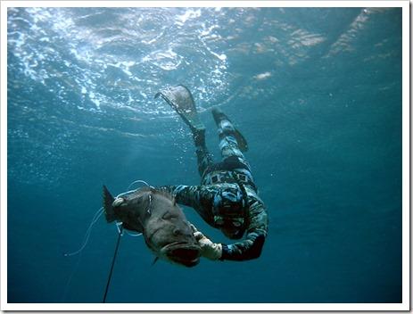 О чём следует помнить, отправляясь на подводную рыбалку?