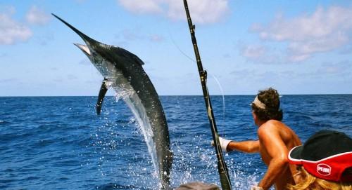 Как ловить рыбу в море