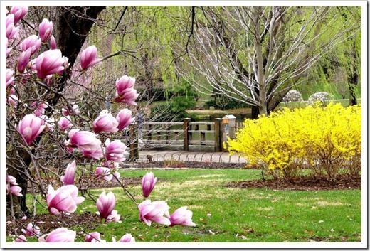 Что посмотреть в Сочи весной?